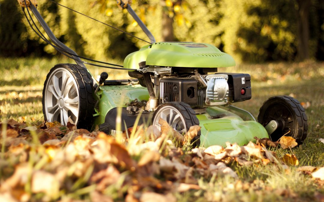 Tips to Get You Lawn Ready for Fall