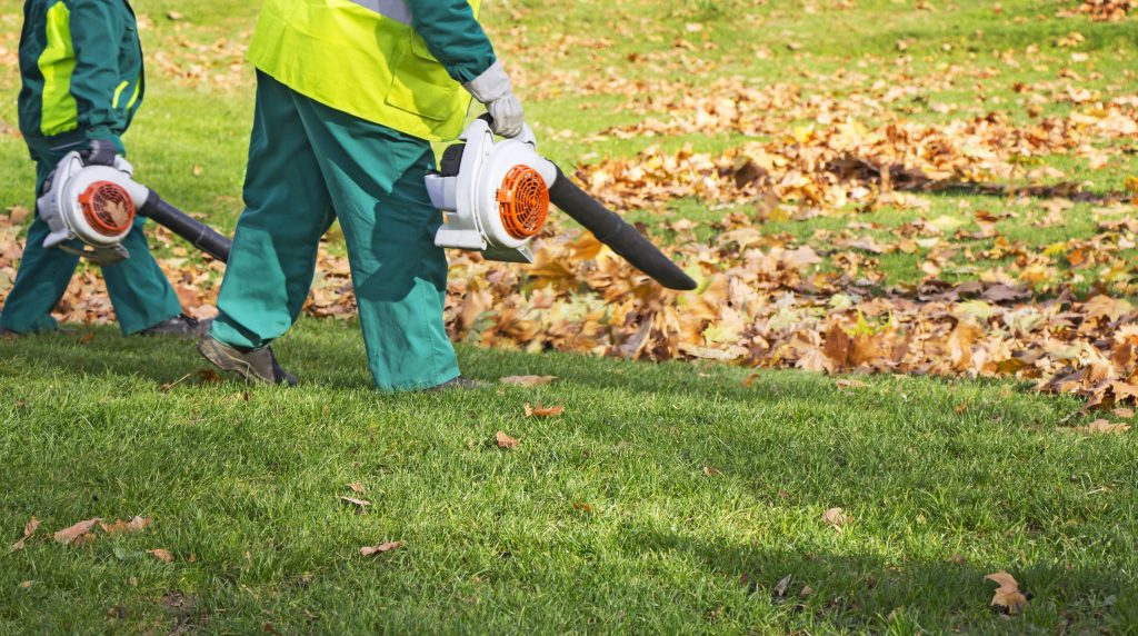 Workers cleaning fallen autumn leaves with a leaf blower